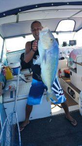 ALLAN Big FISH
